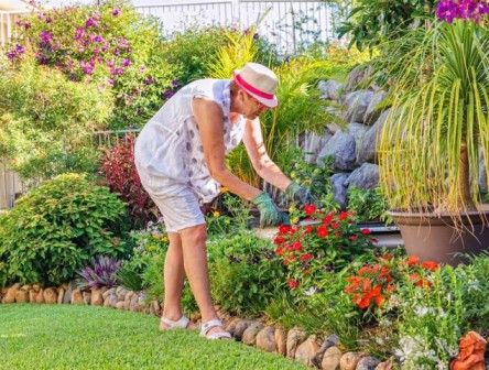 BEST HOME & GARDEN SERVICES